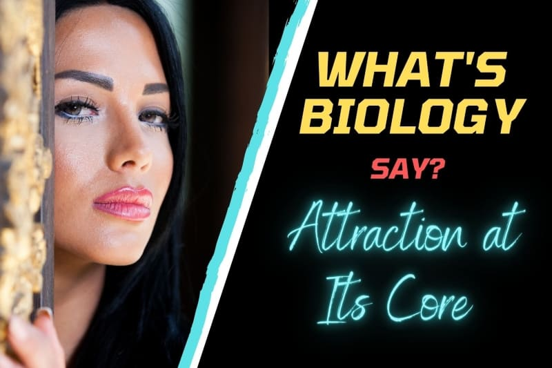 attraction biology for shy men